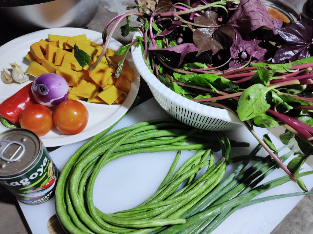 Gardening can help us fight hunger amidst COVID-19 pandemic in the Philippines